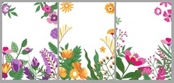 Wild flora and ornaments, decorative foliage on banner with copyspace for text. Bouquet and flowers in bloom, seasonal decor of spring or summer. Romantic card or poster. Vector in flat style