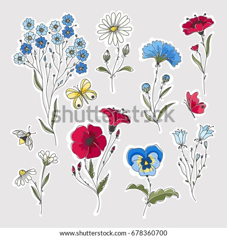 Wild flowers vector drawing set. Isolated flowers, leaves and insects.