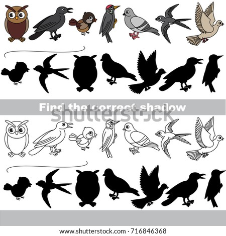 Wild Forest Birds set to find the correct shadow, the matching educational kid game to compare and connect objects and their true shadows, simple gaming level for preschool kids.