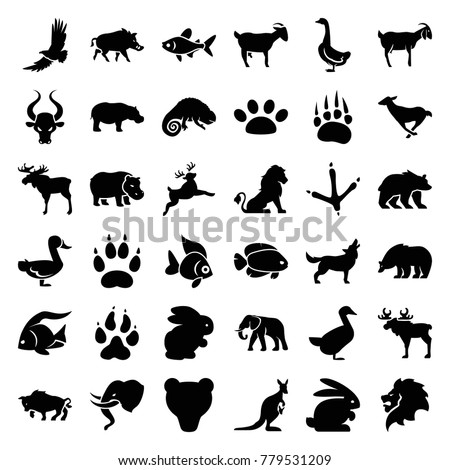 Wild icons. set of 36 editable filled wild icons such as rabbit, animal paw, lion, moose, fish, bear, footprint of  icobird, elephant, goose, goat, chameleon, hippopotamus
