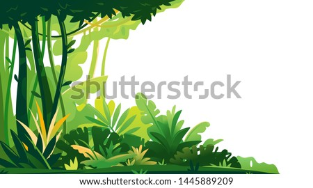 Wild jungle forest with trees, bushes and lianas on white background, decorative composition of jungle plants on one side, dense vegetation of the jungle, beginning of the topical forest