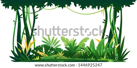 Wild jungle forest with trees, bushes and lianas on white background, decorative composition of jungle plants on one side, dense vegetation of the jungle, topical forest plants