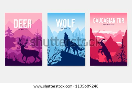 wild life in nature vector