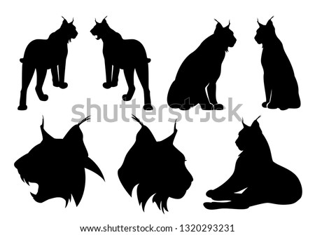 wild lynx cats black vector silhouette set - standing, sitting and roaring animal outlines and heads