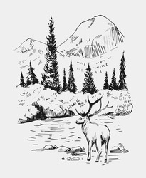 Wild natural landscape with an area of Alaska. A deer stands in the river. Hand drawn illustration converted into vector.