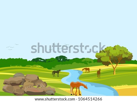 wild nature countryside vector