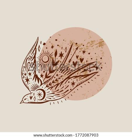 Wild ornate bird. Swallow moonchild. Modern gypsy concept. Love symbol. Harmony and zen. Crescent moon magic symbols. Vector illustration. Foto d'archivio ©
