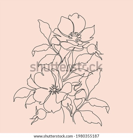 wild rose one line art vector
