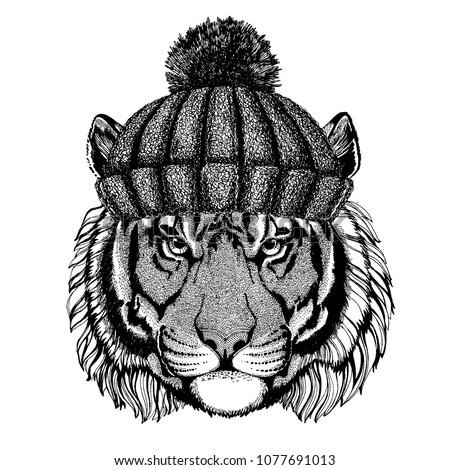 wild tiger cool animal wearing