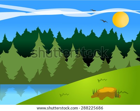 wilderness or forest landscape