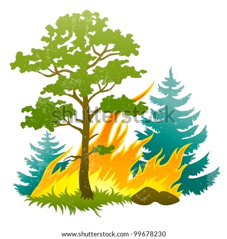 wildfire disaster with burning forest tree and firtrees vector illustration isolated on white background EPS10. Transparent objects used for shadows and lights drawing
