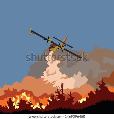 wildfire liquidation fire