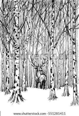 Wildlife carbon drawing. Deer in winter forest vector