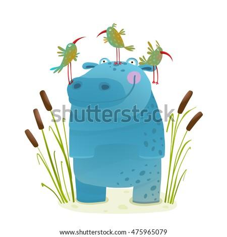wildlife hippo with cute birds