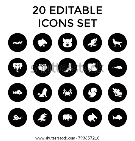 Wildlife icons. set of 20 editable filled wildlife icons such as fish, bear, lion, pig, alligator, eagle, panther, crab, wolf. best quality wildlife elements in trendy style.