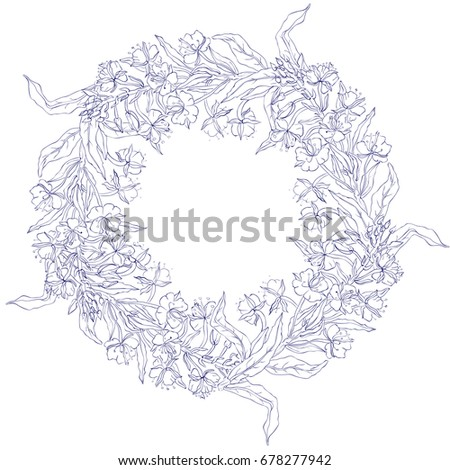 Willow herb, Chamerion angustifolium, fireweed, rosebay, Healing herb hand drawn sketch vector isolated on white, Round frame, wreath with space for text, for card, invitation, packaging tea, cosmetic