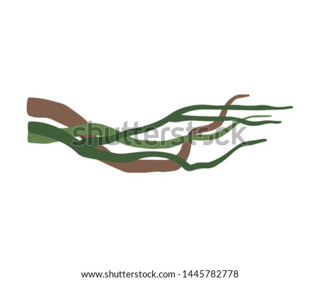 Winding Liana Branches, Tropical Vines, Jungle Plant Decorative Element, Rainforest Flora Vector Illustration