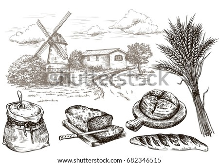 windmill and fresh bakery products. homemade baking. bakery products. vector sketch on white