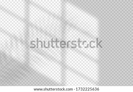 Window and Palm Leaves Shadow Overlay Mockup Design Template. Vector Realistic Shadows on transparent background. Foto stock ©