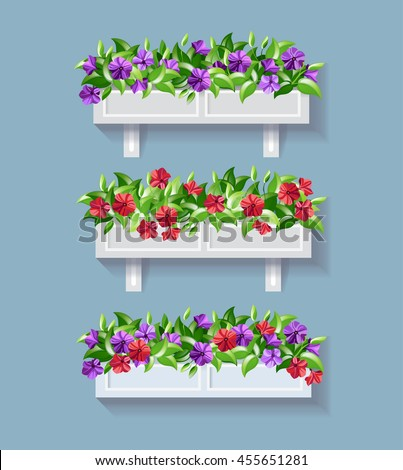 window box flower red and
