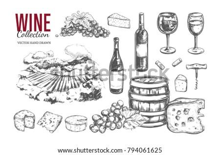 wine set vector hand drawn 2