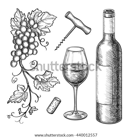 Wine still life Isolated on white background. Hand drawn vector illustration. Retro style.