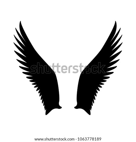 wings bird vector illustration