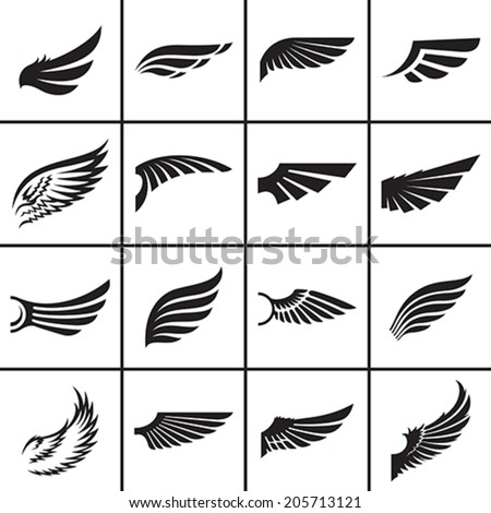 wings design elements set in