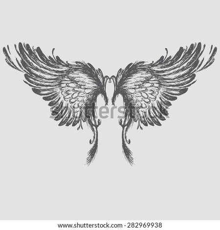 wings hand drawing  vector