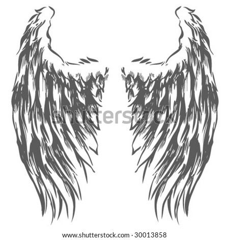Wings  Hand Drawn Vector  Eagle Wing Drawing