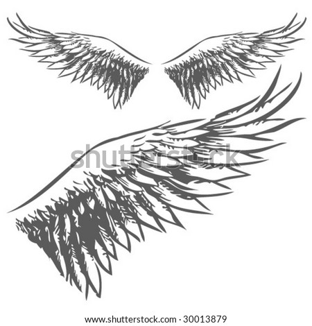 Wings (Hand Drawn Vector Illustration)