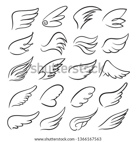 Wings icon set, bird drawing in spread and motion. Angel shape element. Vector  wings sketch illustration isolated on white background