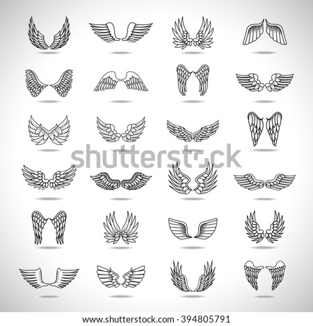 wings icons set isolated on
