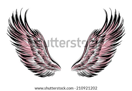 wings outlined in black on a