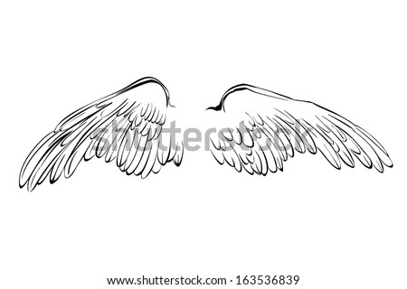 wings sketch collection cartoon