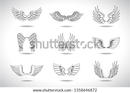 wings sketch set isolated on