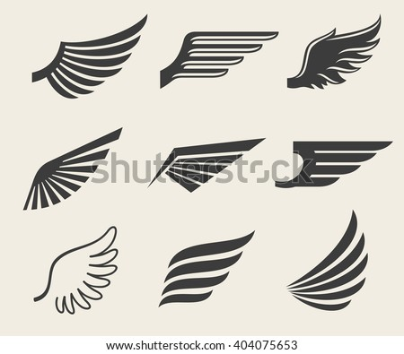 stock-vector-wings-vector-icons-set-wing-set-icon-wing-feather-wing-bird-illustration