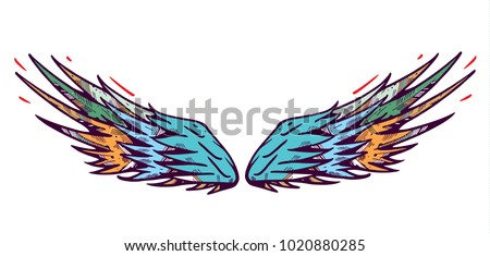 Wings vector illustration on white background.