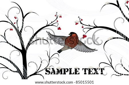 Winter background with bullfinch and wild ash
