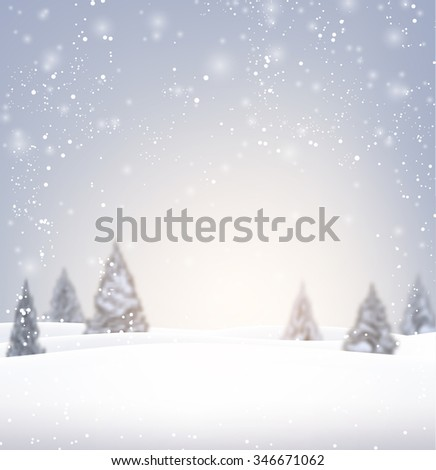 winter background with fir