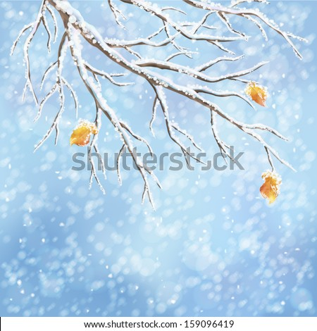 Winter background with snow-covered frozen tree branches, last autumn leaves, snowfall on a blue bokeh backdrop. Snowy weather vector design. Christmas winter landscape greeting card