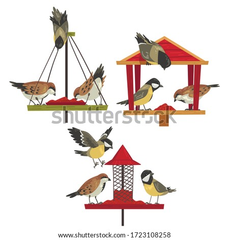 Winter Bird Feeder with Chickadees and Titmouses, Northern Birds Feeding by Seeds Vector Illustration ストックフォト ©