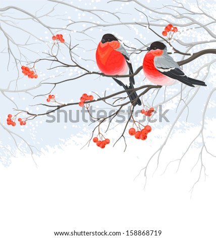 winter card with bullfinches