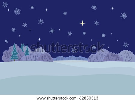 Winter Christmas landscape: wood, snow, the star sky