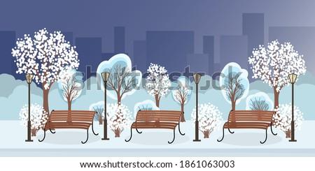 winter city park with snow