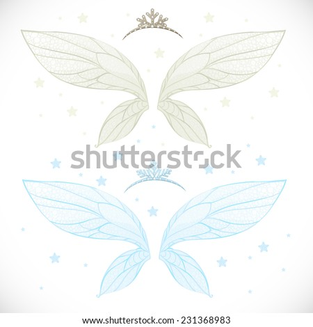 winter fairy wings with tiara