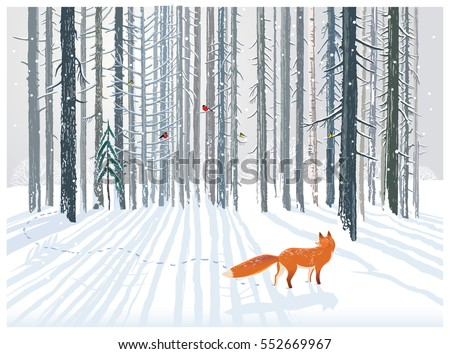 Stock Photo Winter forest landscape with a Fox.