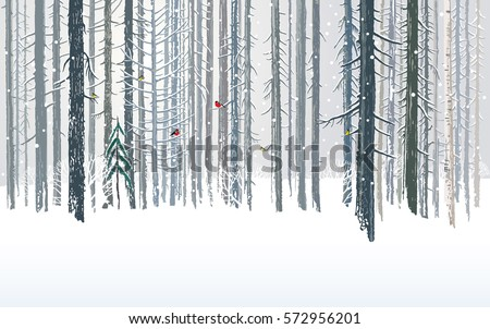 winter forests background