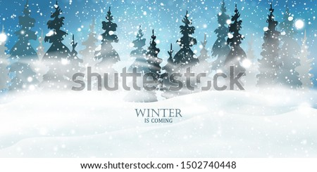 Winter is coming. Christmas, night, Snowy Woodland landscape. Holiday winter landscape for Merry Christmas with firs, coniferous forest, light, snow, snowflakes. Christmas scene. Happy new year.