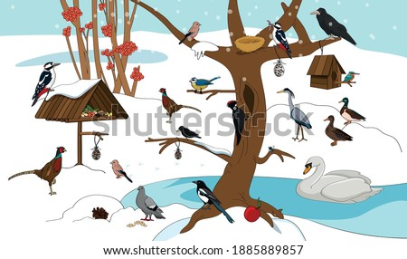 winter landscape with a lot of birds stock photo